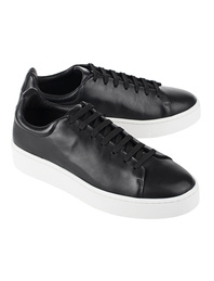 STAMPD California Creeper Black