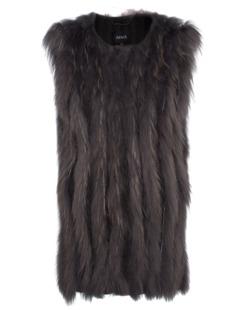 ARMA Narni Raccoon