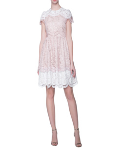 SLY 010 Cotton Lace All Over Rose