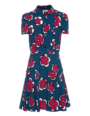 RED VALENTINO Red Floral Blue