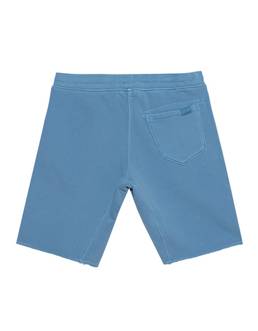 true-religion-h-short-short-lichen-blue_bles