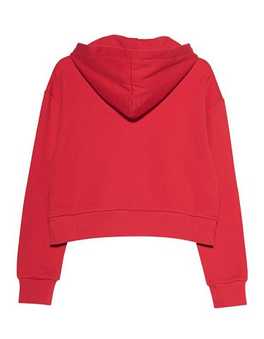 balmain-d-hoodie-cropped-flocked-logo_1_pink