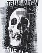 true-religion-h-tshirt-skull_1_white